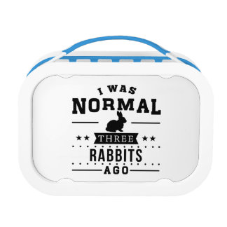 I Was Normal Three Rabbits Ago Lunch Box