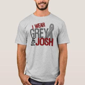 I Wear Grey for Josh #teamJOSH T-Shirt