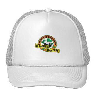 I went to the pub Saint paddy's day 2012 Mesh Hats