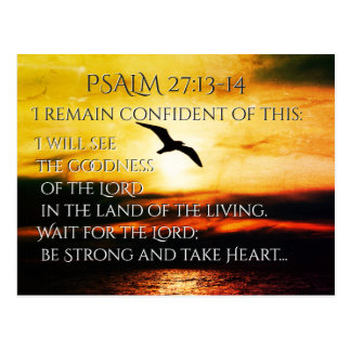 I will see the goodness of the Lord Psalm 27:13-14 Postcard