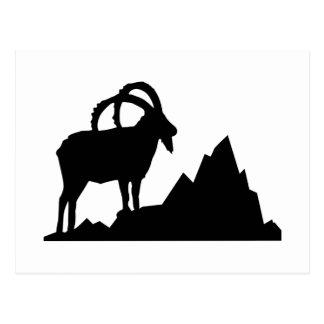 Ibex - Capricorn Postcard