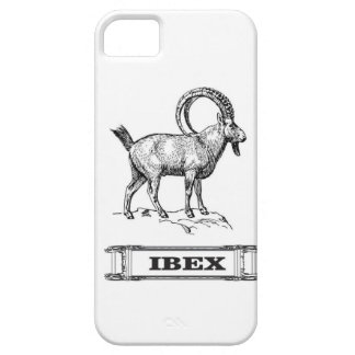 ibex fancy curl barely there iPhone 5 case