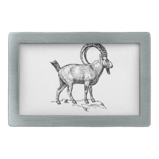 ibex fancy curl rectangular belt buckles