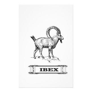 ibex fancy curl stationery
