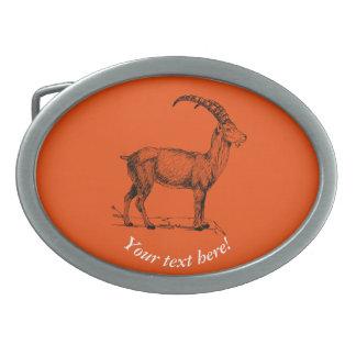 Ibex Oval Belt Buckles