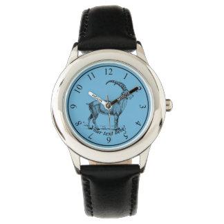 Ibex Watch