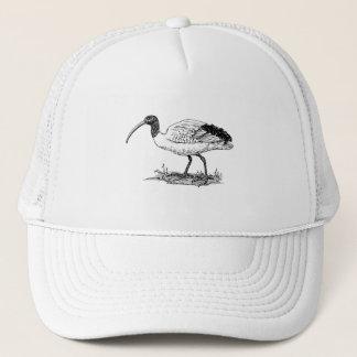 Ibis Bird Art Trucker Hat