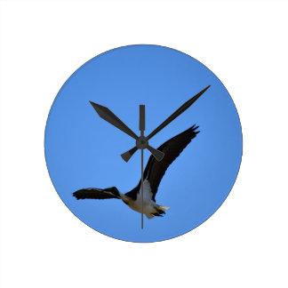 IBIS FLYING RURAL QUEENSLAND AUSTRALIA WALL CLOCK