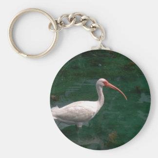Ibis Key Ring