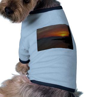Ibiza Sunset Dog Tshirt