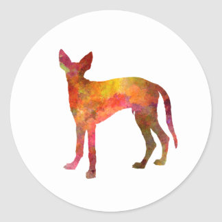 Ibizan Hound in watercolor Round Sticker