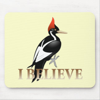 IBWO: I Believe Mouse Pad