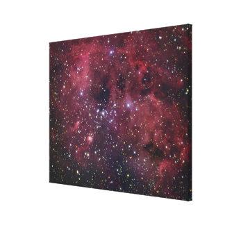 IC410 Emission Nebula in Auriga Gallery Wrap Canvas