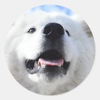"""""""Ice Bear"""" 001 Round Sticker"""
