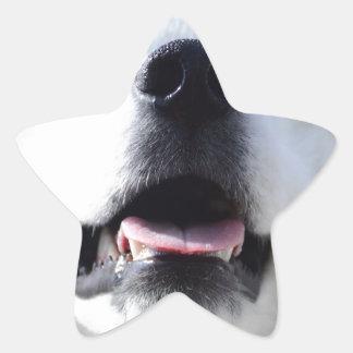 """Ice Bear"" 001 Star Sticker"