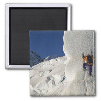 Ice climbing on the Tasman Glacier below Mount Square Magnet