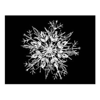 Ice crystal snowflake post card