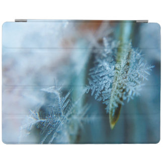Ice Crystal,  Wintertime, Snow, Nature iPad Cover