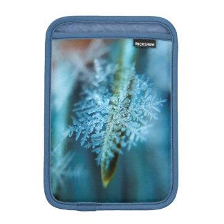 Ice Crystal,  Wintertime, Snow, Nature iPad Mini Sleeve