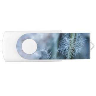 Ice Crystal,  Wintertime, Snow, Nature USB Flash Drive
