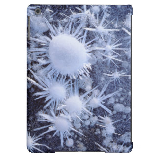 Ice crystals in the Sierra iPad Air Case