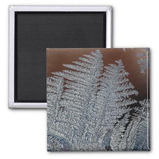 Ice crystals refrigerator magnets