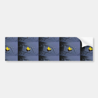 Ice in the pond with yellow maple sheet, ice form, bumper sticker