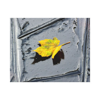 Ice in the pond with yellow maple sheet, ice form, gallery wrap canvas