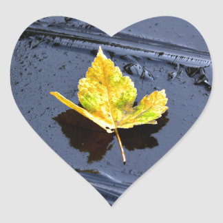 Ice in the pond with yellow maple sheet, ice form, heart stickers