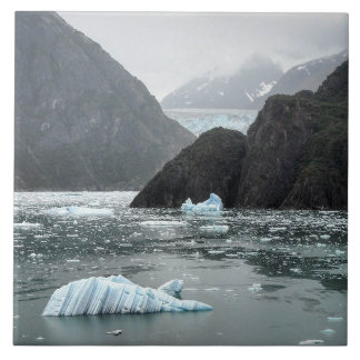 Ice in Tracy Arm Fjord Photo Tile
