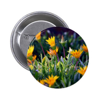 Ice Plant Button