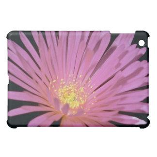 Ice plant (Lampranthus glomeratus) flowers iPad Mini Case