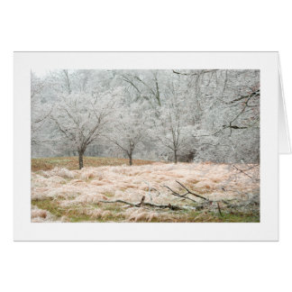 Ice Storm Rural Tennessee - Photograph Card