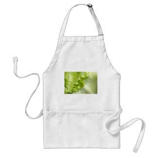 Iceberg lettuce leaf standard apron