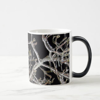 Iced Branches Morphing Mug