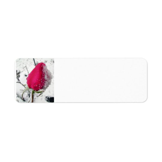Iced Rose Return Address Label