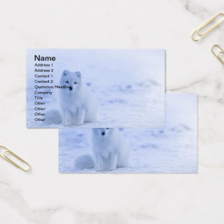 Iceland Arctic Fox Business Card