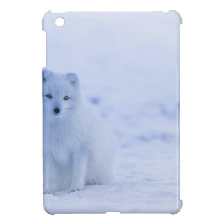 Iceland Arctic Fox Cover For The iPad Mini