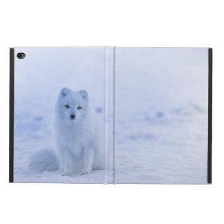 Iceland Arctic Fox Powis iPad Air 2 Case