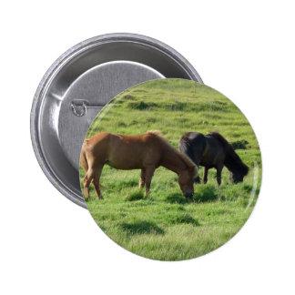 Iceland horses 6 cm round badge