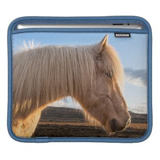 Iceland. Portrait Of Icelandic Horse iPad Sleeve