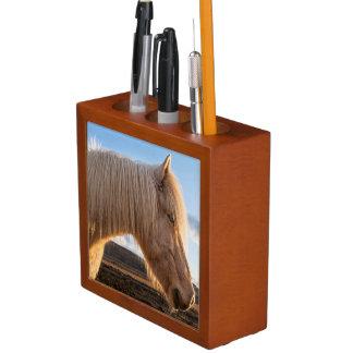 Iceland. Portrait Of Icelandic Horse Pencil/Pen Holder