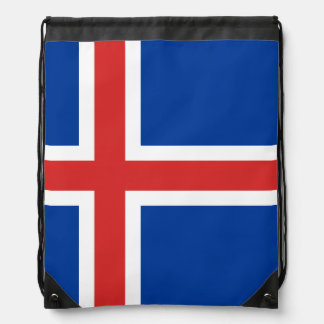 Icelander flag Backpack