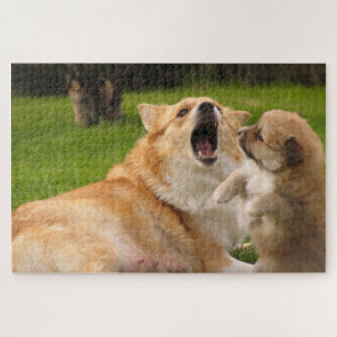 Icelandic dogs playing, customisable puzzle
