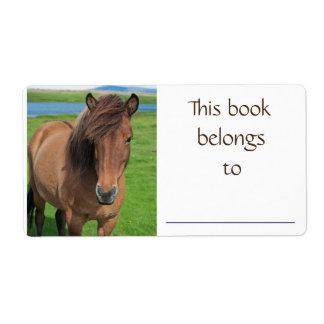 Icelandic Horse book label