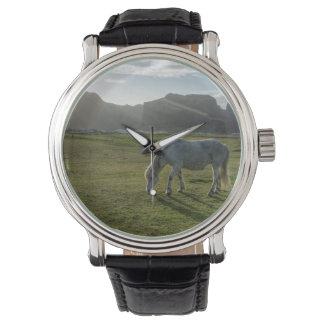 Icelandic horse watch