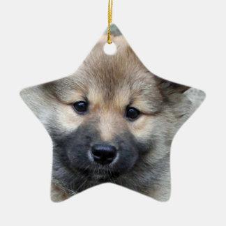 Icelandic Sheepdog 2014-0803 Ornament