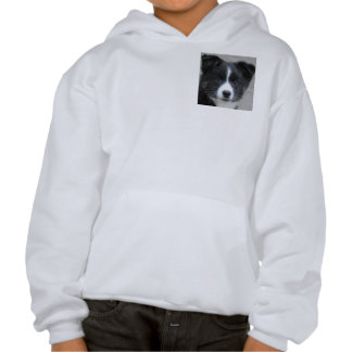 Icelandic Sheepdog 2014-0804 Hooded Sweatshirts