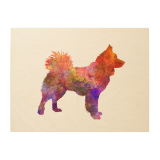 Icelandic Sheepdog in watercolor Wood Print