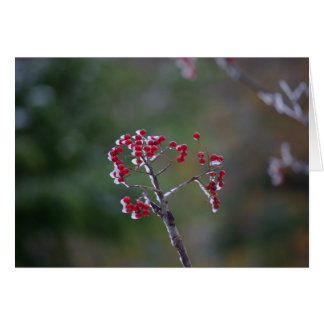 Icey Berry Greeting Card